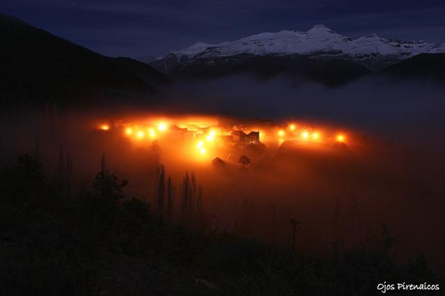 Aratores Niebla Nocturna (2)