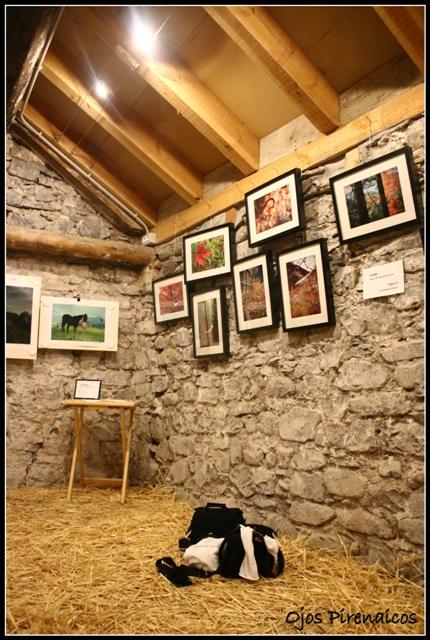 Creative Photofest Ojos Pirenaicos (3)