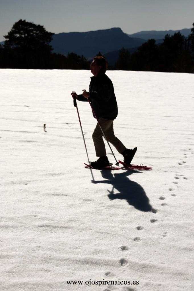 Genial paseo en raquetas de nieve