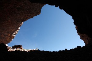 Ojos Pirenaicos-Cueva de los Osos (44)