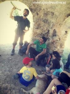 Los buitres y su importancia en las paredes de Vadiello