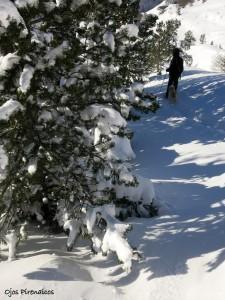 Raquetas de Nieve Ojos Pirenaicos Última nevada 2014  (32)