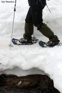 Raquetas de Nieve en Semana Santa