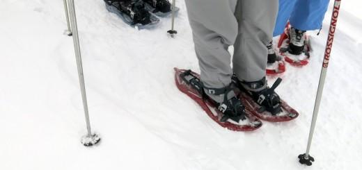 Resultado de imagen de portalet raquetas de nieve ojos pirenaicos