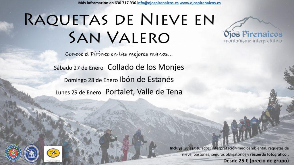 Raquetas de Nieve en el Pirineo